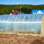 Отопление теплицы из поликарбоната: варианты реализации